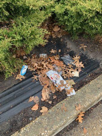pick it up litter